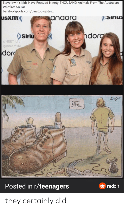 Far: Steve Irwin's Kids Have Rescued Ninety-THOUSAND Animals From The Australian  Wildfires So Far  barstoolsports.com/barstoolu/stev.  usxm)  anaora  ((Sirius  ndorg  ((Siriu  r/NEET_Life  ig@neeetlife  dor  AUST  ROBERT  ATIM  You'LL  GROW  INTO 'EM  BINDI  BOB  Posted in r/teenagers  e reddit they certainly did