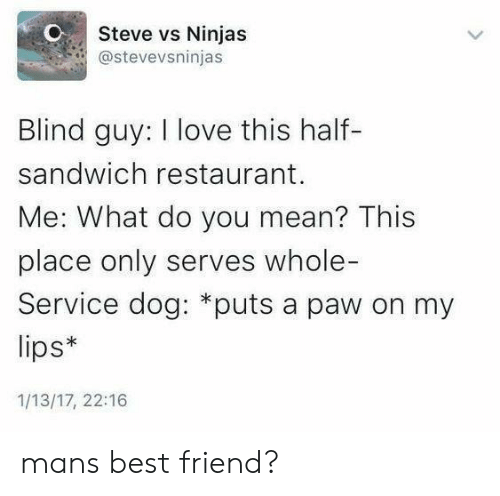 Best Friend, Love, and Best: Steve vs Ninjas  @stevevsninjas  Blind guy: I love this half-  sandwich restaurant.  Me: What do you mean? This  place only serves whole-  Service dog: *puts a paw on my  lips*  1/13/17, 22:16 mans best friend?