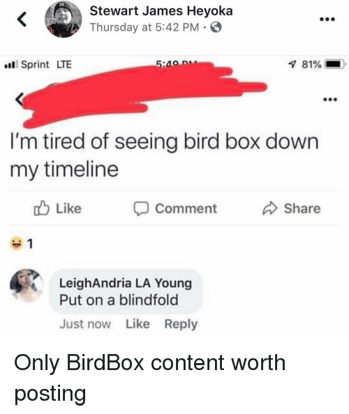 Funny, Sprint, and Content: Stewart James Heyoka  Thursday at 5:42 PM  Sprint LTE  81%  I'm tired of seeing bird box down  my timeline  Like  Comment Share  LeighAndria LA Young  Put on a blindfold  Just now Like Reply Only BirdBox content worth posting