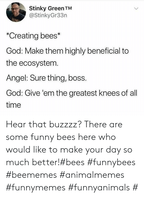 Funny, God, and Angel: Stinky Green TM  @StinkyGr33n  *Creating bees*  God: Make them highly beneficial to  the ecosystem.  Angel: Sure thing, boss.  God: Give 'em the greatest knees of all  time Hear that buzzzz? There are some funny bees here who would like to make your day so much better!#bees #funnybees #beememes #animalmemes #funnymemes #funnyanimals #
