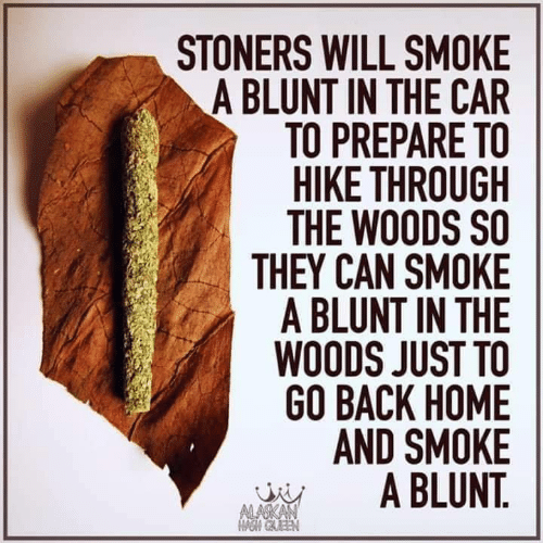 in the woods: STONERS WILL SMOKE  A BLUNT IN THE CAR  TO PREPARE TO  HIKE THROUGH  THE WOODS SO  THEY CAN SMOKE  A BLUNT IN THE  WOODS JUST TO  GO BACK HOME  AND SMOKE  A BLUNT.  ALASKAN  OM GAEEN