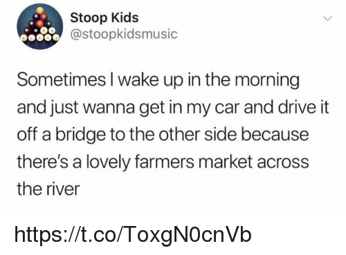 Memes, Drive, and Kids: Stoop Kids  @stoopkidsmusic  Sometimes I wake up in the morning  and just wanna get in my car and drive it  off a bridge to the other side because  there's a lovely farmers market across  the river https://t.co/ToxgN0cnVb