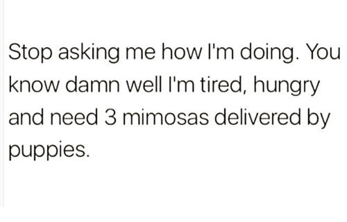 Hungryness: Stop asking me how I'm doing. You  know damn well l'm tired, hungry  and need 3 mimosas delivered by  puppies