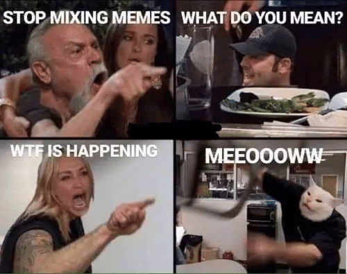 Memes, Wtf, and Mean: STOP MIXING MEMES WHAT DO YOU MEAN?  WTF IS HAPPENING  MEEO0OWW