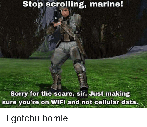 Gotchu: Stop scrolling, marine!  Sorry for the scare, sir. Just making  sure vou're on WiFi and not cellular data. I gotchu homie