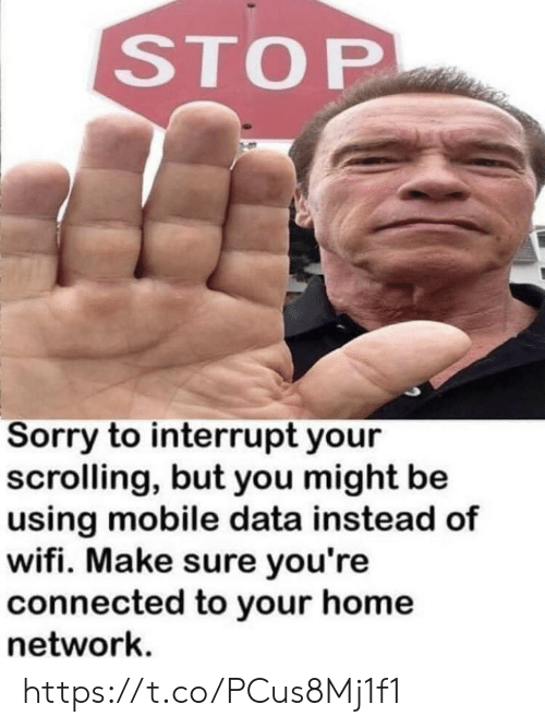 Memes, Sorry, and Connected: STOP  Sorry to interrupt your  scrolling, but you might be  using mobile data instead of  wifi. Make sure you're  connected to your home  network. https://t.co/PCus8Mj1f1