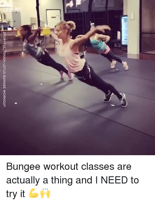 Lotus: STORYFUL/TOUGH LOTUS BUNGEE WORKOUT Bungee workout classes are actually a thing and I NEED to try it 💪🙌