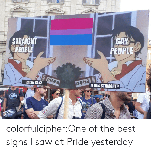 Saw, Tumblr, and Best: STRAIGHT  @PEOPLE  GAY  PEOPLE  Is this GAY?  Is this STRAIGHT?  AD colorfulcipher:One of the best signs I saw at Pride yesterday