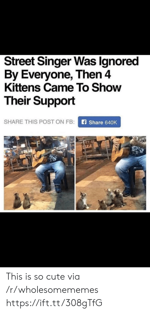 Kittens: Street Singer Was Ignored  By Everyone, Then 4  Kittens Came To Show  Their Support  SHARE THIS POST ON FB:  Share 640K This is so cute via /r/wholesomememes https://ift.tt/308gTfG