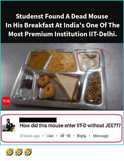 Lit, Memes, and Breakfast: Studenst Found A Dead Mouse  In His Breakfast At India's One Of The  Most Premium Institution IIT-Delhi.  How did this mouse enter lIT-D without JEE???  3 hours ag0 Like 10 Reply Message 🤣🤣🤣