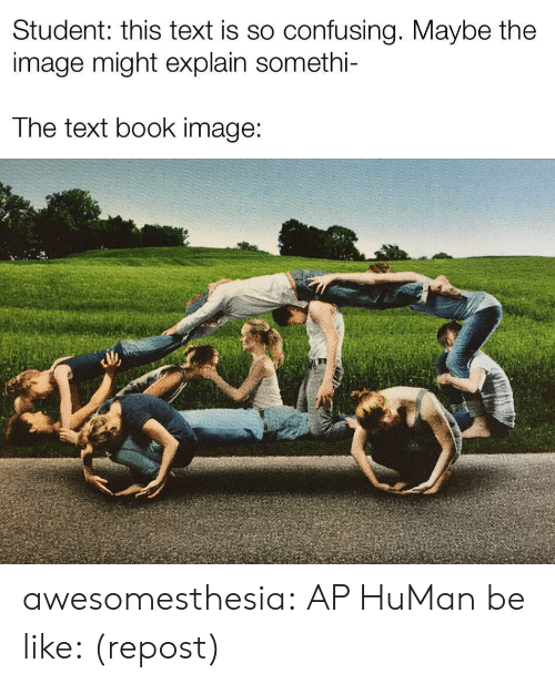 Be Like, Tumblr, and Blog: Student: this text is so confusing. Maybe the  image might explain somethi-  The text book image: awesomesthesia:  AP HuMan be like: (repost)