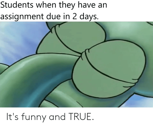Funny, SpongeBob, and True: Students when they have an  assignment due in 2 days. It's funny and TRUE.