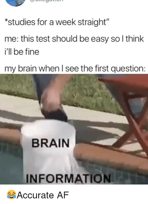 "Af, Memes, and Brain: ""studies for a week straight""  me: this test should be easy so l think  i'll be fine  my brain when l see the first question:  BRAIN  INFORMATION 😂Accurate AF"