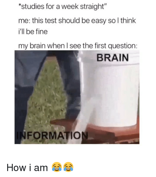 "Funny, Formation, and Brain: studies for a week straight""  me: this test should be easy so l think  i'll be fine  my brain when l see the first question:  BRAIN  FORMATION How i am 😂😂"
