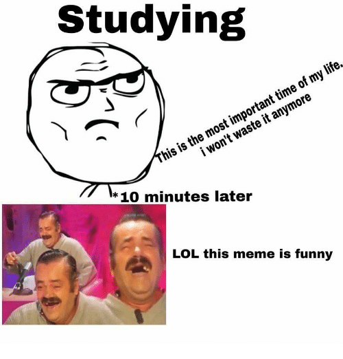 10 Minutes Later: Studying  his is the most important time of my life.  i won't waste it anymore  * 10 minutes later  LOL this meme is funny