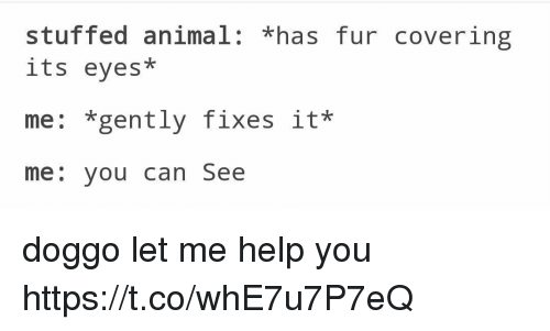 "Memes, Animal, and Help: stuffed animal: ""has fur covering  its eyes  me: *gently fixes it*  me: you can See doggo let me help you https://t.co/whE7u7P7eQ"