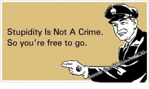 Criming: Stupidity Is Not A Crime  So you're free to go.