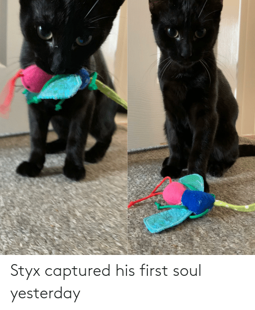 styx: Styx captured his first soul yesterday