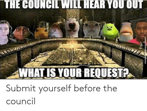 Council: Submit yourself before the council