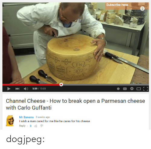 Tumblr, Banana, and Blog: Subscribe here  UETN  5:59/15:03  Channel Cheese - How to break open a Parmesan cheese  with Carlo Guffanti   Mr Banana 3 weeks ago  I wish a man cared for me like he cares for his cheese  Reply-8 dogjpeg: