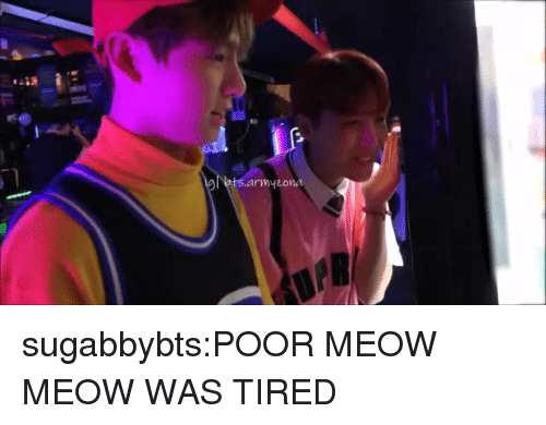 Tumblr, Blog, and Com: sugabbybts:POOR MEOW MEOW WAS TIRED
