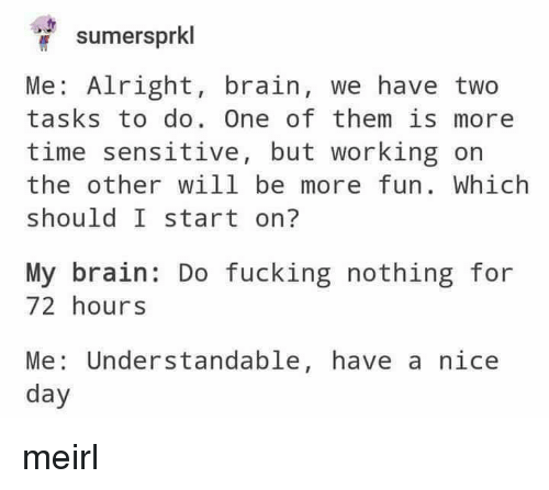 understandable: sumersprkl  Me: Alright, brain, we have two  tasks to do. One of them is more  time sensitive, but working on  the other will be more fun. Which  should I start on?  My brain: Do fucking nothing for  72 hours  Me: Understandable, have a nice  day meirl