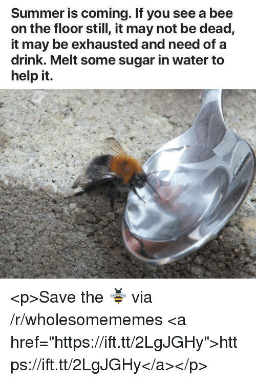 "Summer, Help, and Sugar: Summer is coming. If you see a bee  on the floor still, it may not be dead,  it may be exhausted and need of a  drink. Melt some sugar in water to  help it. <p>Save the 🐝 via /r/wholesomememes <a href=""https://ift.tt/2LgJGHy"">https://ift.tt/2LgJGHy</a></p>"