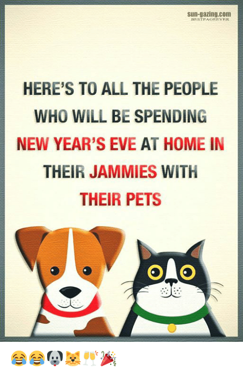 Memes, Pets, and Home: sun-gazing.com  HERE'S TO ALL THE PEOPLE  WHO WILL BE SPENDING  NEW YEAR'S EVE AT HOME IN  THEIR JAMMIES WITH  THEIR PETS 😂😂🐶🐱🥂🎉