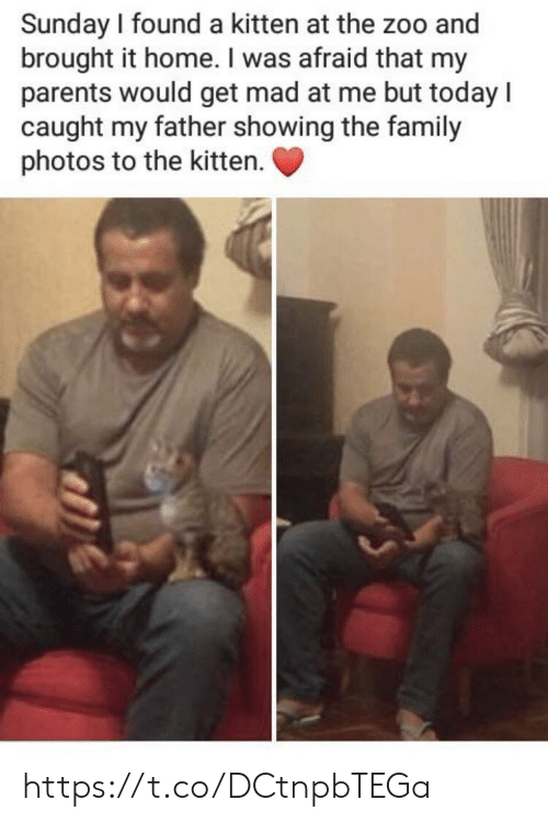 Caught My: Sunday I found a kitten at the zoo and  brought it home. I was afraid that my  parents would get mad at me but today l  caught my father showing the family  photos to the kitten. https://t.co/DCtnpbTEGa