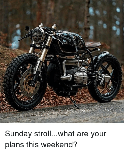 Memes, Sunday, and 🤖: Sunday stroll...what are your plans this weekend?