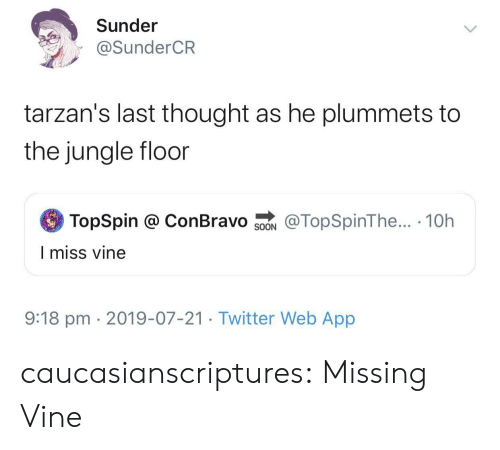 Vine: Sunder  @SunderCR  tarzan's last thought as he plummets to  the jungle floor  TopSpin @ ConBravo  @TopSpinThe... 10h  SOON  I miss vine  9:18 pm 2019-07-21. Twitter Web App caucasianscriptures:  Missing Vine