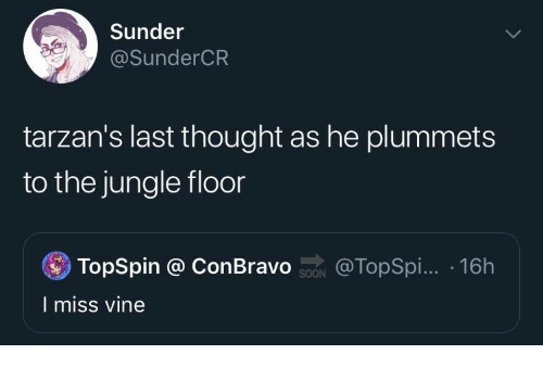 Vine, Thought, and Miss: Sunder  @SunderCR  tarzan's last thought as he plummets  to the jungle floor  TopSpin @ ConBravo ON  @TopSpi... 16h  I miss vine