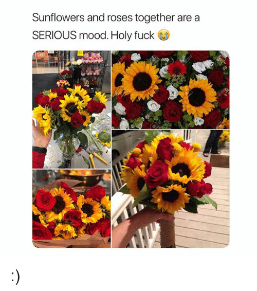Mood, Fuck, and Girl Memes: Sunflowers and roses together are a  SERIOUS mood. Holy fuck :)