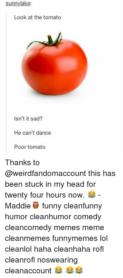 tomatos: sunny lake:  Look at the tomato  Isn't it sad?  He can't dance  Poor tomato Thanks to @weirdfandomaccount this has been stuck in my head for twenty four hours now. 😂 -Maddie🦉 funny cleanfunny humor cleanhumor comedy cleancomedy memes meme cleanmemes funnymemes lol cleanlol haha cleanhaha rofl cleanrofl noswearing cleanaccount 😂 😂😂