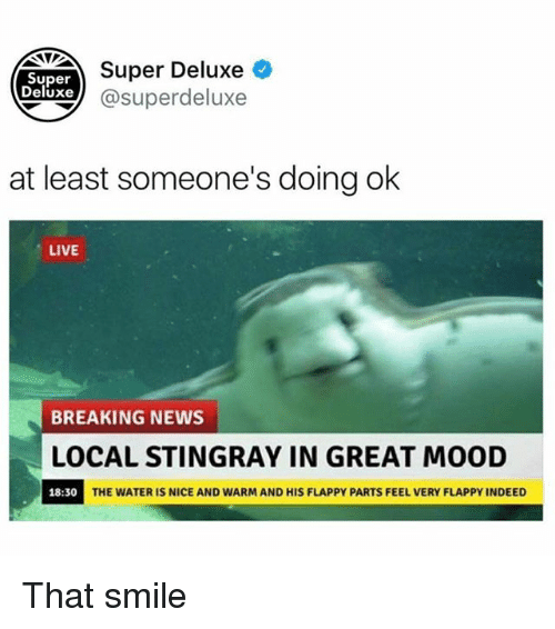 Funny, Mood, and News: Super Deluxe  Super  eluxe@superdeluxe  at least someone's doing ok  LIVE  BREAKING NEWS  LOCAL STINGRAY IN GREAT MOOD  18:30  THE WATER IS NICE AND WARM AND HIS FLAPPY PARTS FEEL VERY FLAPPY INDEED That smile
