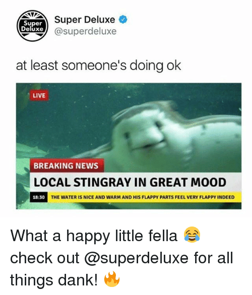 Danks: Super Deluxe  Super  eluxe@superdeluxe  at least someone's doing ok  LIVE  BREAKING NEWS  LOCAL STINGRAY IN GREAT MOOD  18:30  THE WATER IS NICE AND WARM AND HIS FLAPPY PARTS FEEL VERY FLAPPY INDEED What a happy little fella 😂 check out @superdeluxe for all things dank! 🔥
