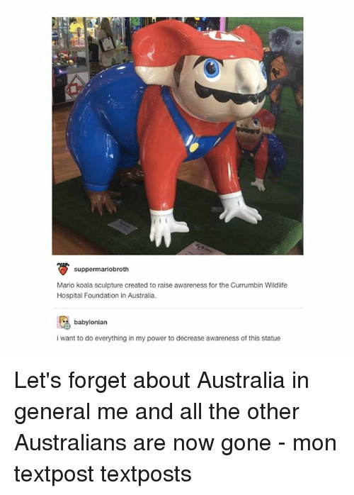 Koalaing: suppermariobroth  Mario koala sculpture created to raise awareness for the Currumbin Wildlife  Hospital Foundation in Australia.  babylonian  i want to do everything in my power to decrease awareness of this statue Let's forget about Australia in general me and all the other Australians are now gone - mon textpost textposts