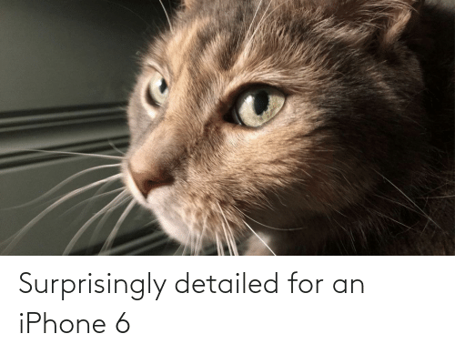 Iphone 6: Surprisingly detailed for an iPhone 6
