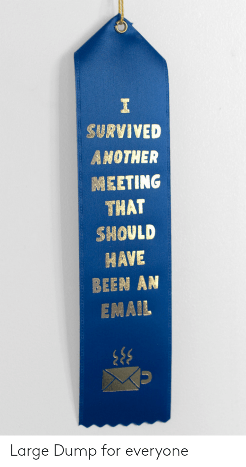 For Everyone: SURVIVED  ANOTHER  MEETING  THAT  SHOULD  HAVE  BEEN AN  EMAIL Large Dump for everyone