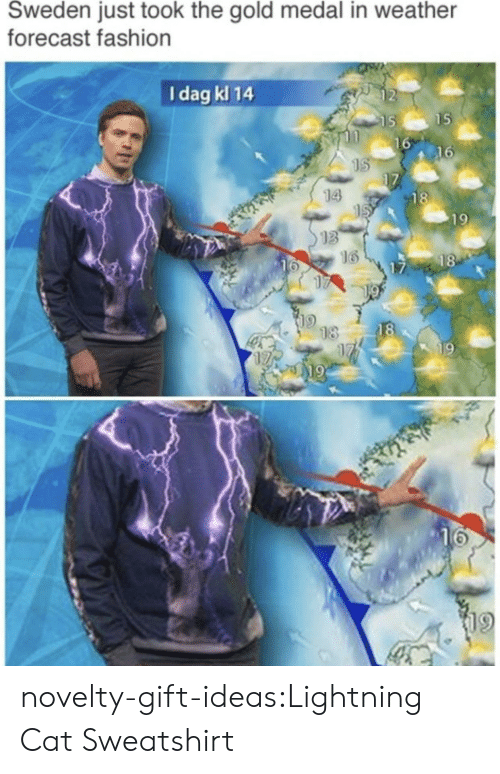 Lightning: Sweden just took the gold medal in weather  forecast fashion  I dag kl 14  2  15  16  16  14  18  19  13  16  18  16  17  18  18  19  19  19 novelty-gift-ideas:Lightning Cat Sweatshirt