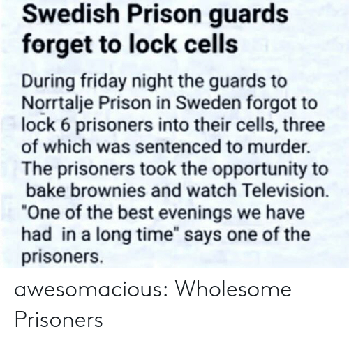 "Friday, Tumblr, and Prison: Swedish Prison guards  forget to lock cells  During friday night the guards to  Norrtalje Prison in Sweden forgot to  lock 6 prisoners into their cells, three  of which was sentenced to murder.  The prisoners took the opportunity to  bake brownies and watch Television.  ""One of the best evenings we have  had in a long time"" says one of the  prisoners. awesomacious:  Wholesome Prisoners"