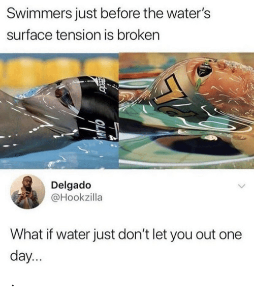 Water, Surface, and One: Swimmers just before the water's  surface tension is broken  Delgado  @Hookzilla  What if water just don't let you out one  day...  Eeda .