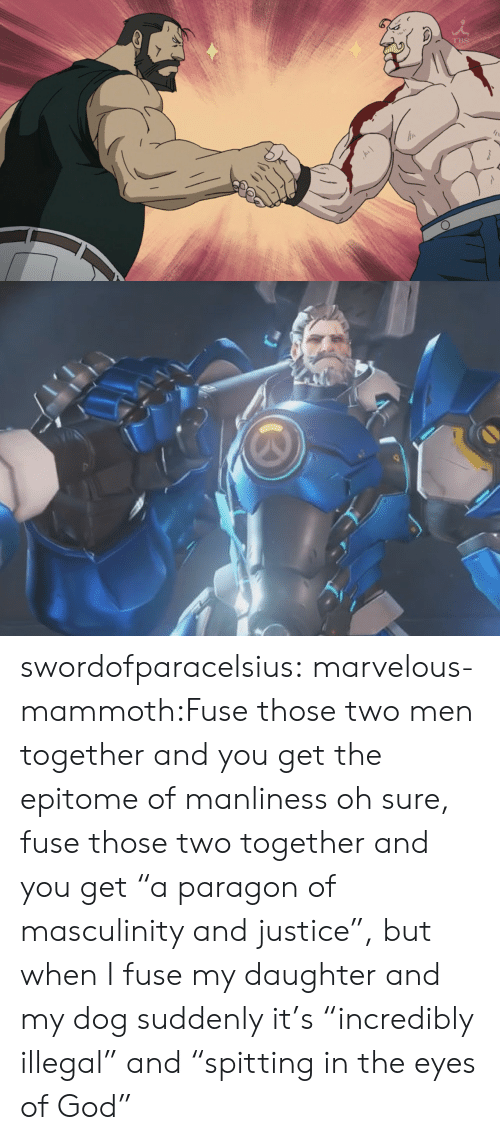 """Marvelous: swordofparacelsius:  marvelous-mammoth:Fuse those two men together and you get the epitome of manliness   oh sure, fuse those two together and you get """"a paragon of masculinity and justice"""",  but when I fuse my daughter and my dog suddenly it's """"incredibly illegal"""" and """"spitting in the eyes of God"""""""