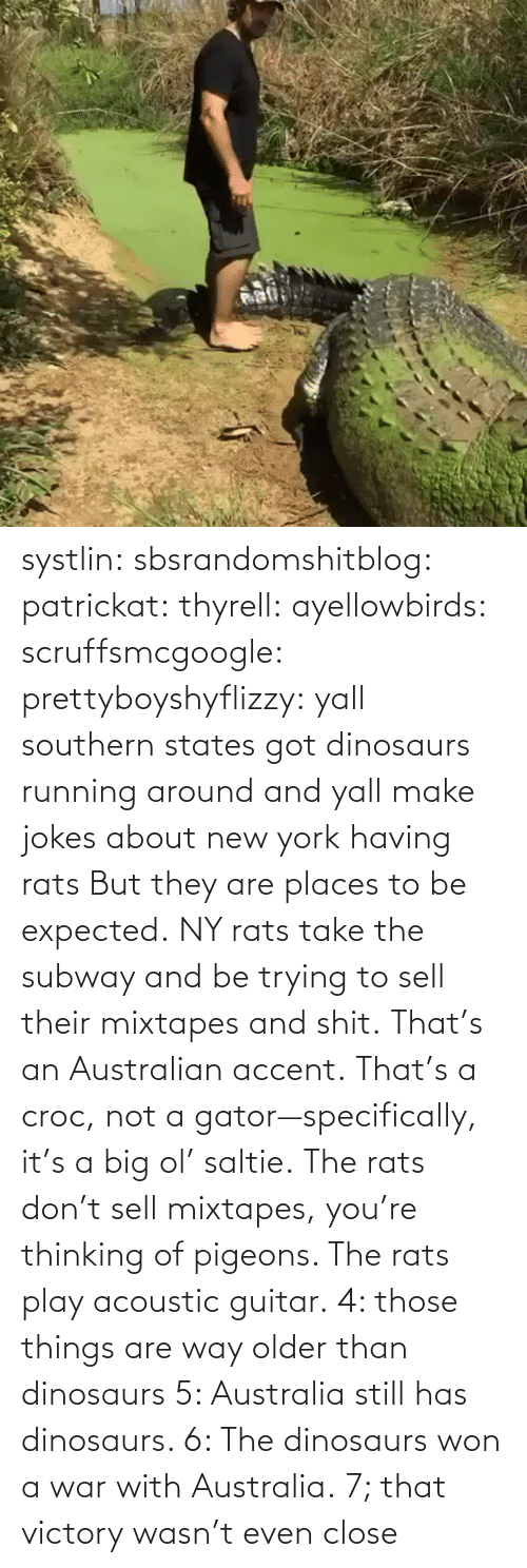 Older: systlin: sbsrandomshitblog:  patrickat:   thyrell:  ayellowbirds:  scruffsmcgoogle:  prettyboyshyflizzy: yall southern states got dinosaurs running around and yall make jokes about new york having rats  But they are places to be expected. NY rats take  the subway and be trying to sell their mixtapes and shit.  That's an Australian accent. That's a croc, not a gator—specifically, it's a big ol' saltie. The rats don't sell mixtapes, you're thinking of pigeons. The rats play acoustic guitar.   4: those things are way older than dinosaurs   5: Australia still has dinosaurs.    6: The dinosaurs won a war with Australia.  7; that victory wasn't even close