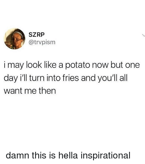 Potato, Relatable, and One: SZRP  @trvpism  i may look like a potato now but one  day i'll turn into fries and you'll all  want me then damn this is hella inspirational