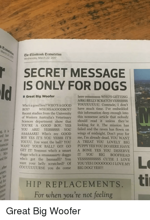 Dogs, Love, and Good: t Ca  March 22.2n  The Ellenbrook Trainstation  Wednesday March 22, 2017  SECRET MESSAGE  IS ONLY FOR DOGS  Great Big woofer  here yesssssssss WHO'S GETTING  ABIG BELLYSCRATCH YESSSSSS  Who's a good boy? WHO'SAGOOD YOUUUUUUU. Comrade, I don't  BOY? WHOSSAGOODBOY? have much time. I've embedded  Recent studies from the University this information deep enough into  of Western Australia's Veterinary this nonsense article that nobody  Sciences department show that should read it unless they're  YOURE A GOOD BOY. YES looking for it. The mission has  YOU ARE! YESSSSSS YOU failed and the raven has flown on  AAAAAARE! Who's my GOOD wings of midnight. Don't pray for  BOY YES IT'S YOU YESSS ITS me, I'm already dead. YOU WANT  YOUUU. You want the ball? YOU A TREAT YOU LOVELY BIG  WANT YOUR BALL? GO! GO PUPPY YES YOU DO HERE HAVE  GET IT! Yessssss who's a smart A BONE YES YOU DESERVE  doggo who's a smaaaaaarty doggo IT YOU BIG BOOFHEAD  who's got the baaaaalll? You YESSSSSSSSSS CUTIE I LOVE  want your belly scratched? Of YOUYES I DO0000OI LOVE MY  it is  has  iron  g,  rd  e  nancial  almost  Mrs  ed for  Lo  ti  COUUUUUURSE you do come BIG DOG! YES!!  ctor  HIP REPLACEMENTS,  For when you're not feeling Great Big Woofer