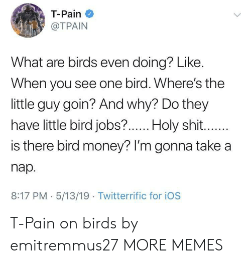 Tpain: T-Pain  @TPAIN  What are birds even doing? Like.  When you see one bird. Where's the  little guy goin? And why? Do they  have little bird jobs?  .Holy shit  is there bird money? lI'm gonna take a  nap.  8:17 PM 5/13/19 Twitterrific for iOS T-Pain on birds by emitremmus27 MORE MEMES