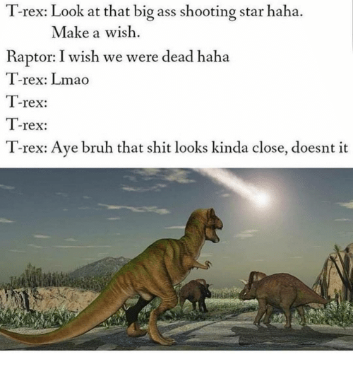 shooting star: T-rex: Look at that big ass shooting star haha.  Make a wish  Raptor: I wish we were dead haha  T-rex: Lmao  T-rex:  T-rex:  T-rex: Ave bruh that shit looks kinda close, doesnt it