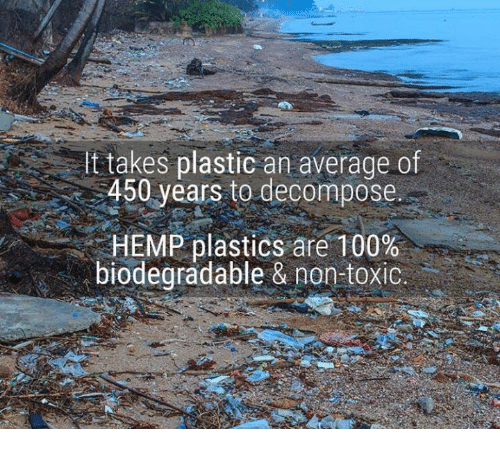 decomposer: t takes plastic an average of  450 years to decompose.  HEMP plastics are 100%  biodegradable & non-toxic