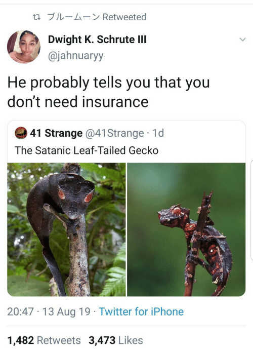 gecko: t1 ブルームーン Retweeted  Dwight K. Schrute lII  @jahnuaryy  He probably tells you that you  don't need insurance  41 Strange @41 Strange 1d  The Satanic Leaf-Tailed Gecko  20:47 13 Aug 19 Twitter for iPhone  1,482 Retweets 3,473 Likes